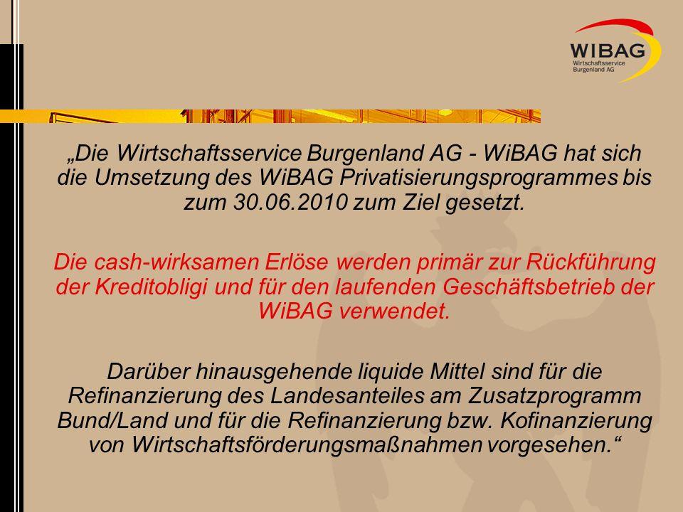 Die Wirtschaftsservice Burgenland AG - WiBAG hat sich die Umsetzung des WiBAG Privatisierungsprogrammes bis zum 30.06.2010 zum Ziel gesetzt. Die cash-