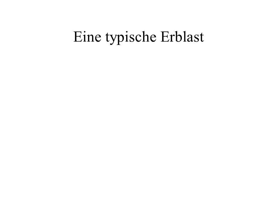 Eine typische Erblast