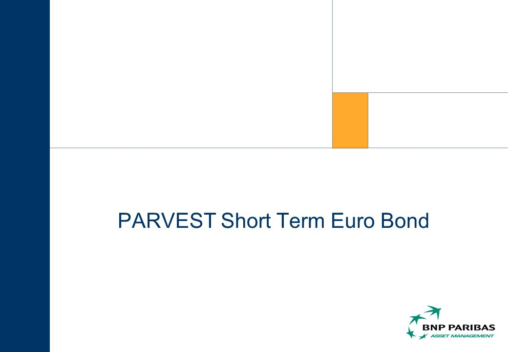 PARVEST Short Term Euro Bond