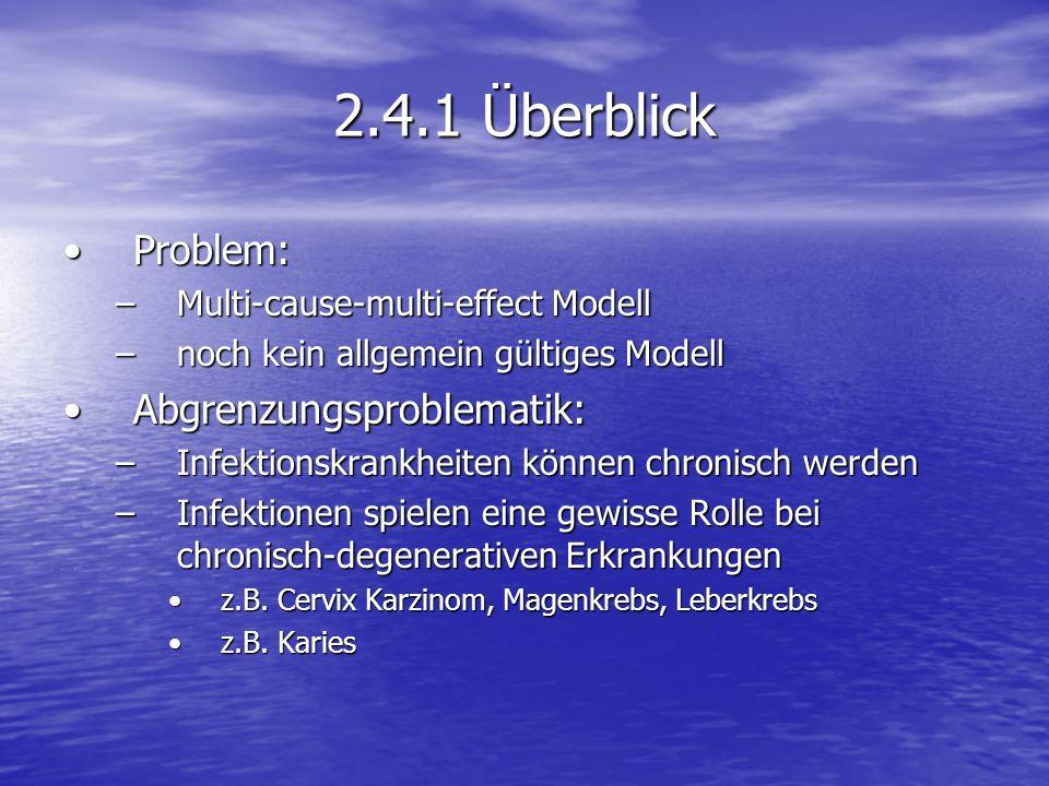 2.4.1 Überblick Problem:Problem: –Multi-cause-multi-effect Modell –noch kein allgemein gültiges Modell Abgrenzungsproblematik:Abgrenzungsproblematik: