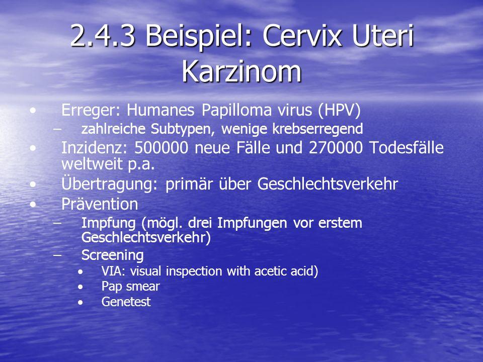 2.4.3 Beispiel: Cervix Uteri Karzinom Erreger: Humanes Papilloma virus (HPV) – –zahlreiche Subtypen, wenige krebserregend Inzidenz: 500000 neue Fälle