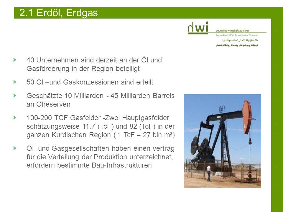……………………………………………………………………………………………………………………………… 2.1 Erdöl, Erdgas 40 Unternehmen sind derzeit an der Öl und Gasförderung in der Region beteiligt 50 Ö