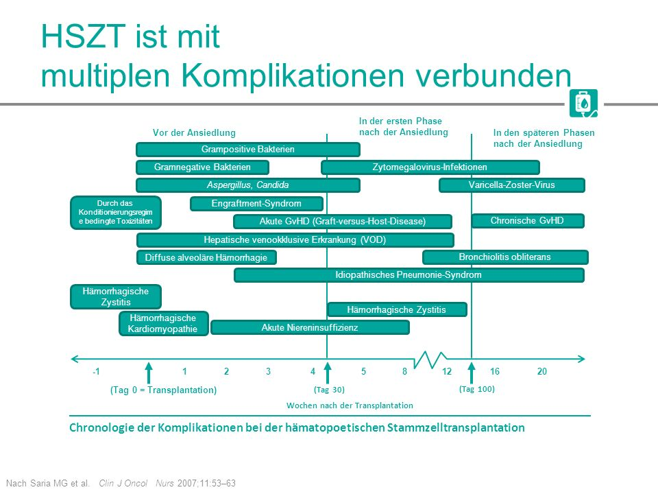 HSZT ist mit multiplen Komplikationen verbunden Nach Saria MG et al. Clin J Oncol Nurs 2007;11:53–63 Gramnegative Bakterien Durch das Konditionierungs
