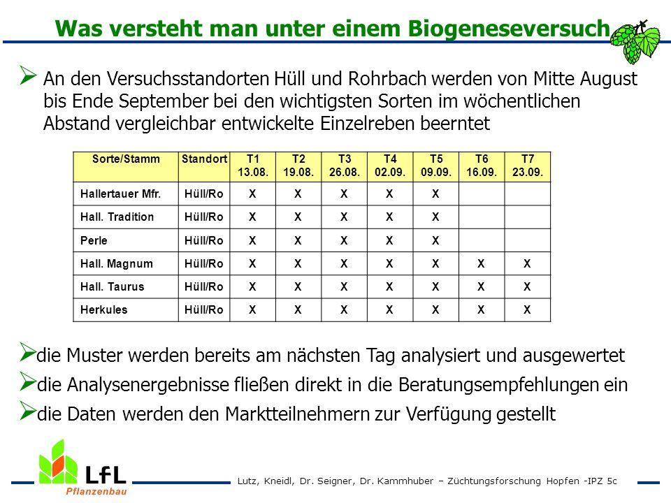 An den Versuchsstandorten Hüll und Rohrbach werden von Mitte August bis Ende September bei den wichtigsten Sorten im wöchentlichen Abstand vergleichba