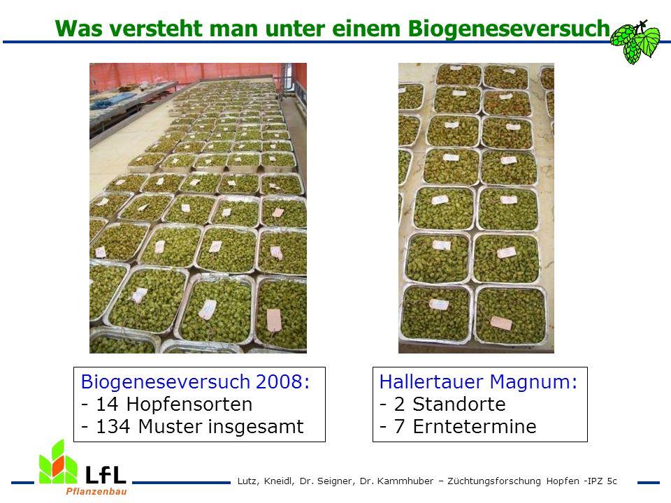Was versteht man unter einem Biogeneseversuch Biogeneseversuch 2008: - 14 Hopfensorten - 134 Muster insgesamt Hallertauer Magnum: - 2 Standorte - 7 Er