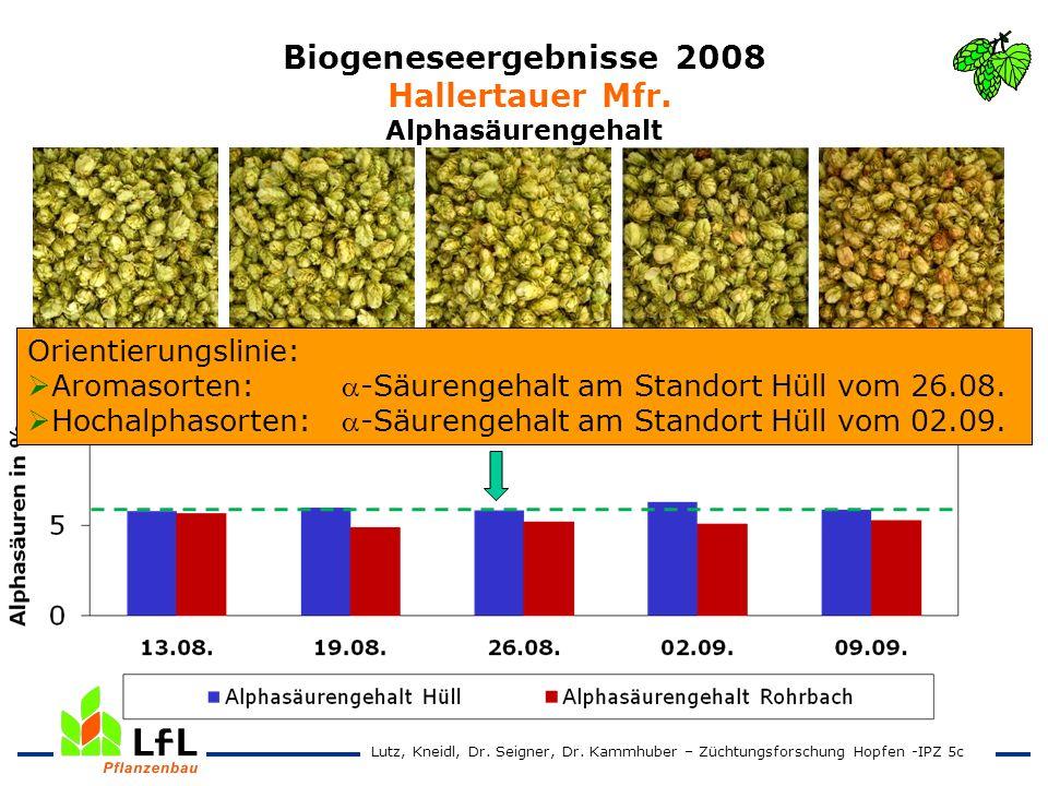 Biogeneseergebnisse 2008 Hallertauer Mfr. Alphasäurengehalt 13.08. 19.08. 26.08. 02.09 09.09. Orientierungslinie: Aromasorten:-Säurengehalt am Standor