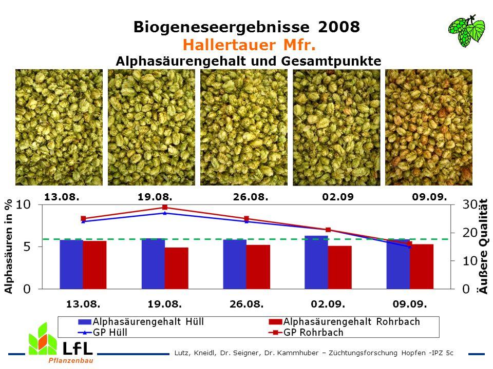 Biogeneseergebnisse 2008 Hallertauer Mfr. Alphasäurengehalt und Gesamtpunkte 13.08. 19.08. 26.08. 02.09 09.09. Lutz, Kneidl, Dr. Seigner, Dr. Kammhube