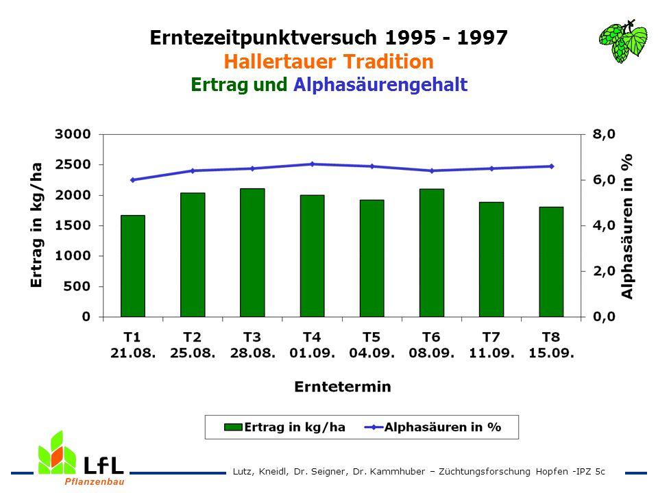 Erntezeitpunktversuch 1995 - 1997 Hallertauer Tradition Ertrag und Alphasäurengehalt Lutz, Kneidl, Dr. Seigner, Dr. Kammhuber – Züchtungsforschung Hop