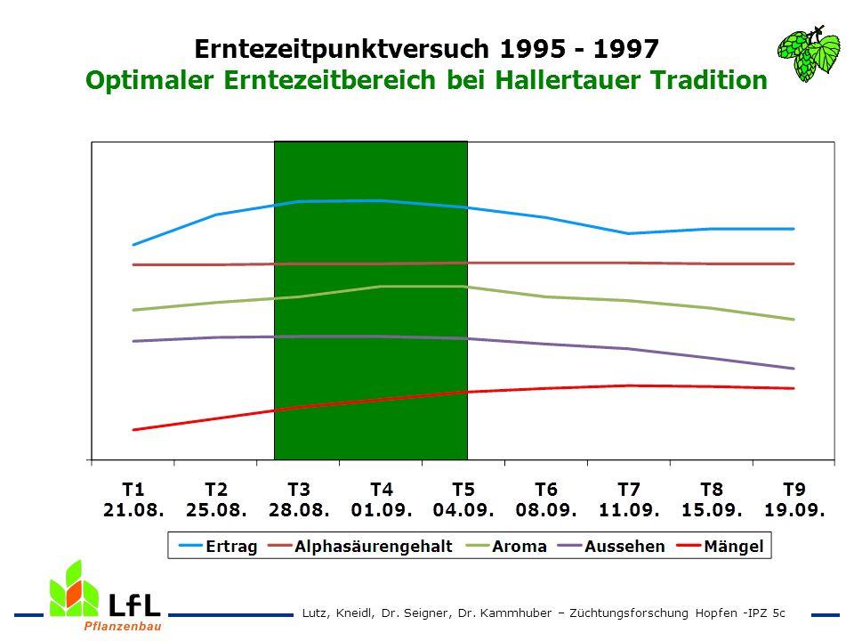Erntezeitpunktversuch 1995 - 1997 Optimaler Erntezeitbereich bei Hallertauer Tradition Lutz, Kneidl, Dr. Seigner, Dr. Kammhuber – Züchtungsforschung H