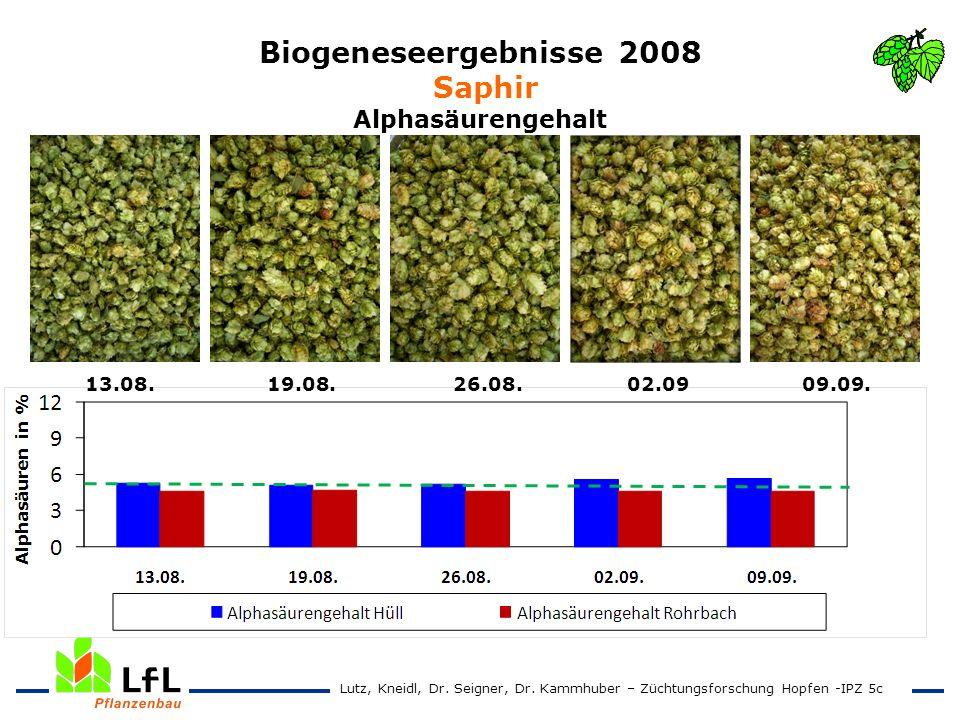 Biogeneseergebnisse 2008 Saphir Alphasäurengehalt 13.08. 19.08. 26.08. 02.09 09.09. Lutz, Kneidl, Dr. Seigner, Dr. Kammhuber – Züchtungsforschung Hopf