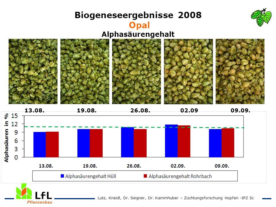 Biogeneseergebnisse 2008 Opal Alphasäurengehalt 13.08. 19.08. 26.08. 02.09 09.09. Lutz, Kneidl, Dr. Seigner, Dr. Kammhuber – Züchtungsforschung Hopfen
