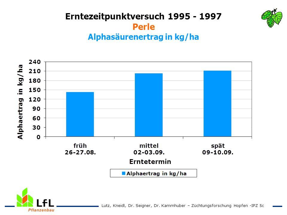 Erntezeitpunktversuch 1995 - 1997 Perle Alphasäurenertrag in kg/ha Lutz, Kneidl, Dr. Seigner, Dr. Kammhuber – Züchtungsforschung Hopfen -IPZ 5c