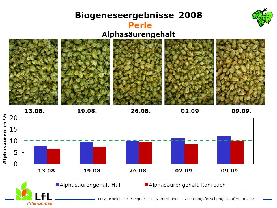 Biogeneseergebnisse 2008 Perle Alphasäurengehalt 13.08. 19.08. 26.08. 02.09 09.09. Lutz, Kneidl, Dr. Seigner, Dr. Kammhuber – Züchtungsforschung Hopfe