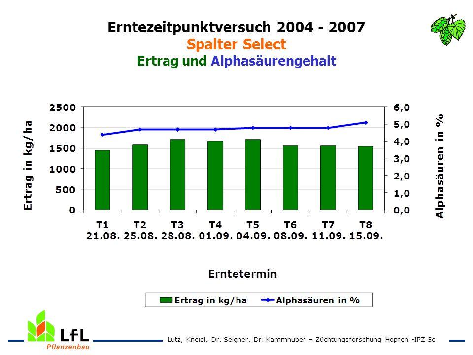 Erntezeitpunktversuch 2004 - 2007 Spalter Select Ertrag und Alphasäurengehalt Lutz, Kneidl, Dr. Seigner, Dr. Kammhuber – Züchtungsforschung Hopfen -IP