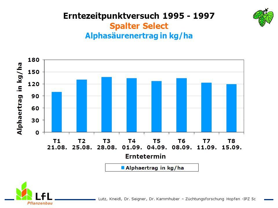 Erntezeitpunktversuch 1995 - 1997 Spalter Select Alphasäurenertrag in kg/ha Lutz, Kneidl, Dr. Seigner, Dr. Kammhuber – Züchtungsforschung Hopfen -IPZ