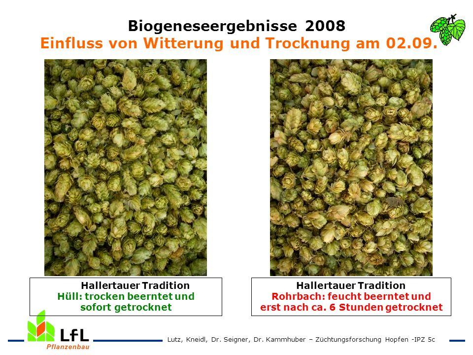 Biogeneseergebnisse 2008 Einfluss von Witterung und Trocknung am 02.09. Hallertauer Tradition Rohrbach: feucht beerntet und erst nach ca. 6 Stunden ge