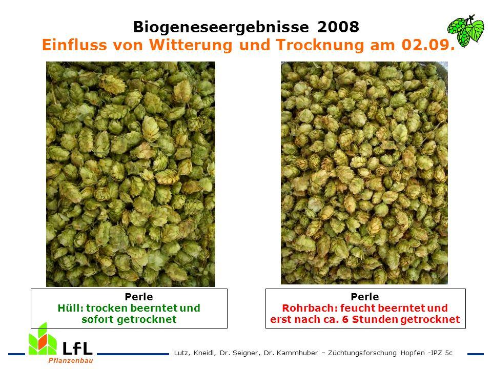 Biogeneseergebnisse 2008 Einfluss von Witterung und Trocknung am 02.09. Perle Rohrbach: feucht beerntet und erst nach ca. 6 Stunden getrocknet Perle H