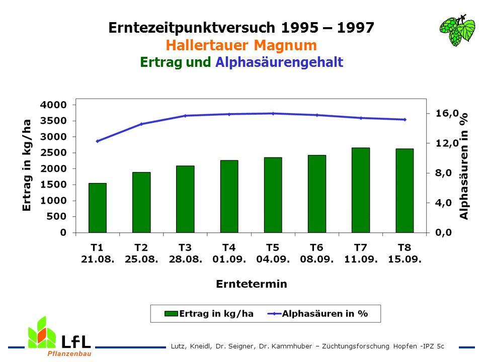 Erntezeitpunktversuch 1995 – 1997 Hallertauer Magnum Ertrag und Alphasäurengehalt Lutz, Kneidl, Dr. Seigner, Dr. Kammhuber – Züchtungsforschung Hopfen