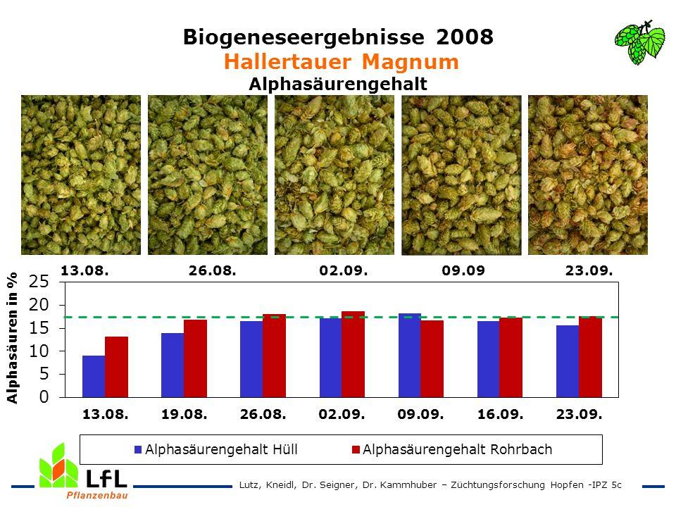 Biogeneseergebnisse 2008 Hallertauer Magnum Alphasäurengehalt 13.08. 26.08. 02.09. 09.09 23.09. Lutz, Kneidl, Dr. Seigner, Dr. Kammhuber – Züchtungsfo