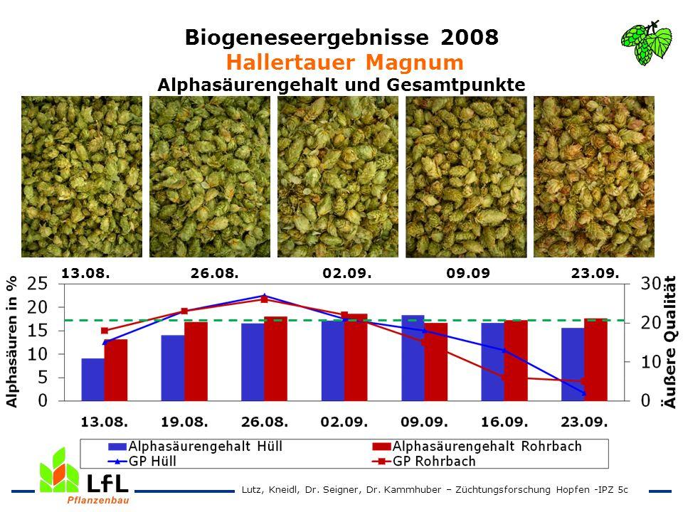 Biogeneseergebnisse 2008 Hallertauer Magnum Alphasäurengehalt und Gesamtpunkte 13.08. 26.08. 02.09. 09.09 23.09. Lutz, Kneidl, Dr. Seigner, Dr. Kammhu