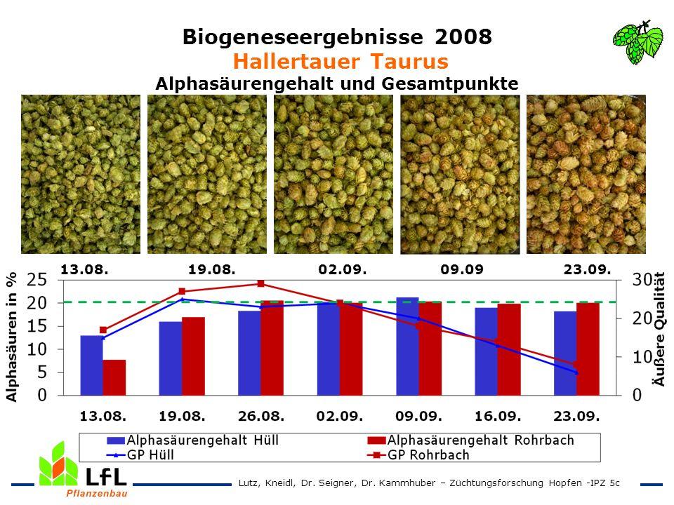 Biogeneseergebnisse 2008 Hallertauer Taurus Alphasäurengehalt und Gesamtpunkte 13.08. 19.08. 02.09. 09.09 23.09. Lutz, Kneidl, Dr. Seigner, Dr. Kammhu