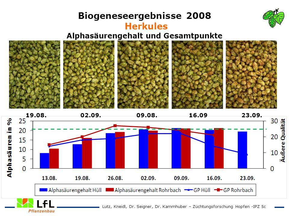 Biogeneseergebnisse 2008 Herkules Alphasäurengehalt und Gesamtpunkte 19.08. 02.09. 09.08. 16.09 23.09. Lutz, Kneidl, Dr. Seigner, Dr. Kammhuber – Züch