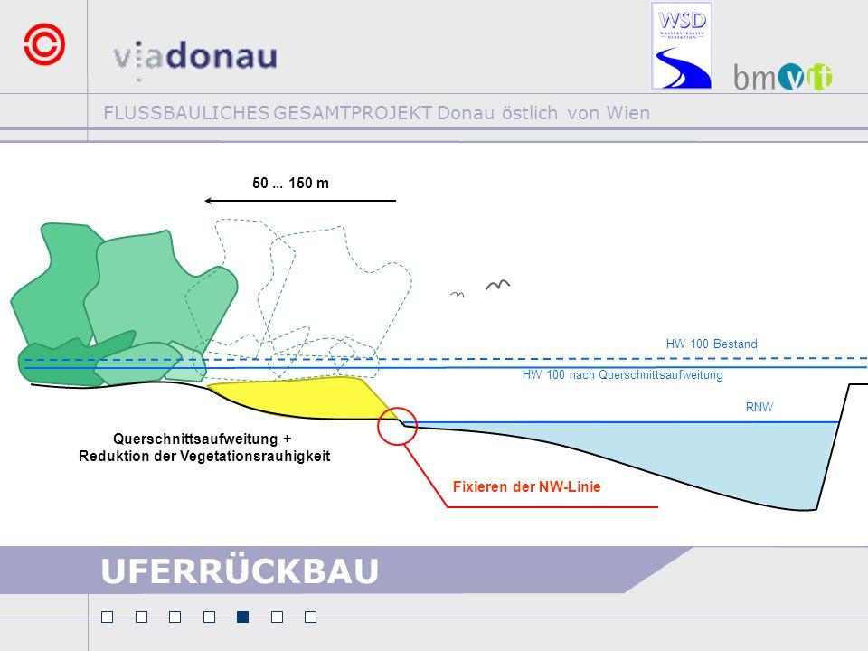 FLUSSBAULICHES GESAMTPROJEKT Donau östlich von Wien UFERRÜCKBAU RNW Fixieren der NW-Linie Querschnittsaufweitung + Reduktion der Vegetationsrauhigkeit