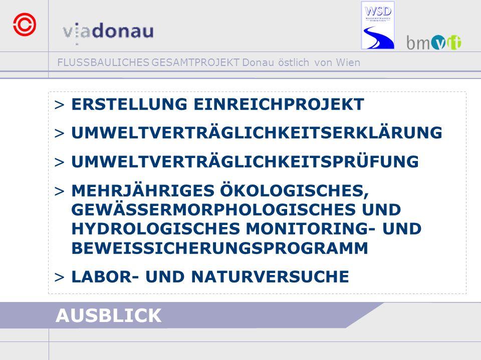 FLUSSBAULICHES GESAMTPROJEKT Donau östlich von Wien AUSBLICK >ERSTELLUNG EINREICHPROJEKT >UMWELTVERTRÄGLICHKEITSERKLÄRUNG >UMWELTVERTRÄGLICHKEITSPRÜFU