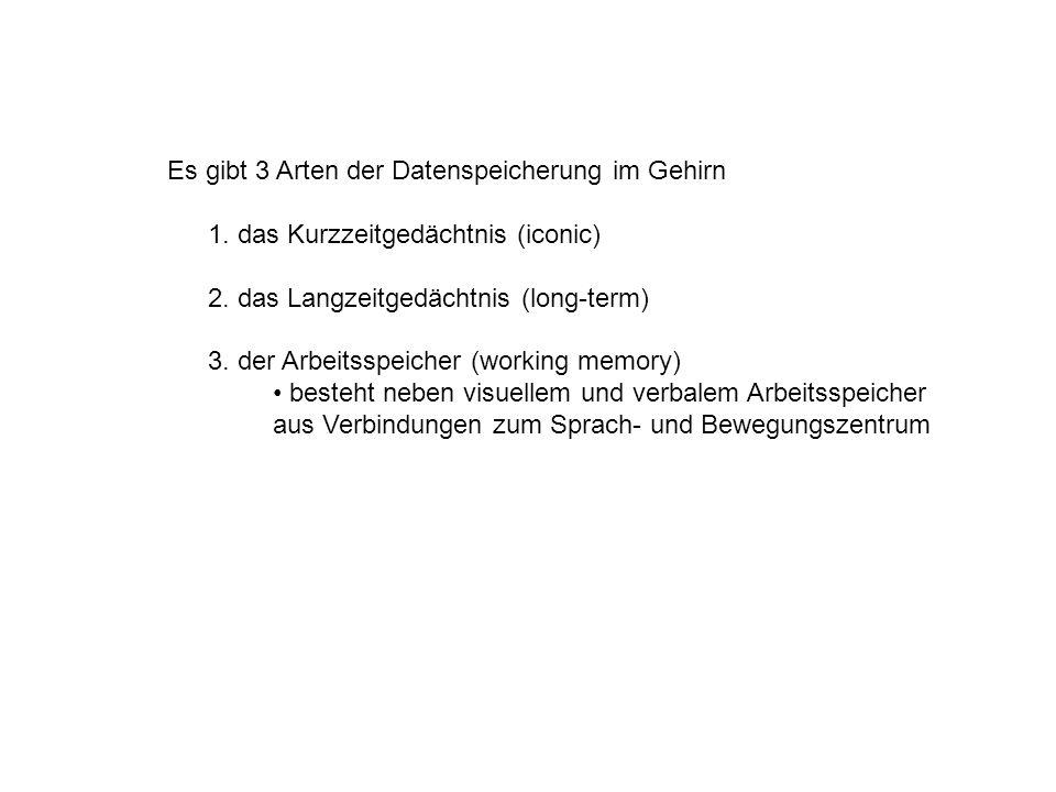Es gibt 3 Arten der Datenspeicherung im Gehirn 1. das Kurzzeitgedächtnis (iconic) 2.