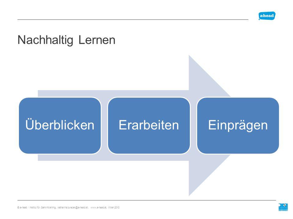 Lernprofil Motivation Organisation Konzentration Lernstrategien Gedächtnis Wiedergabe © a-head / Institut für Gehirntraining, katharina.turecek@a-head.at, www.a-head.at, Wien 2013