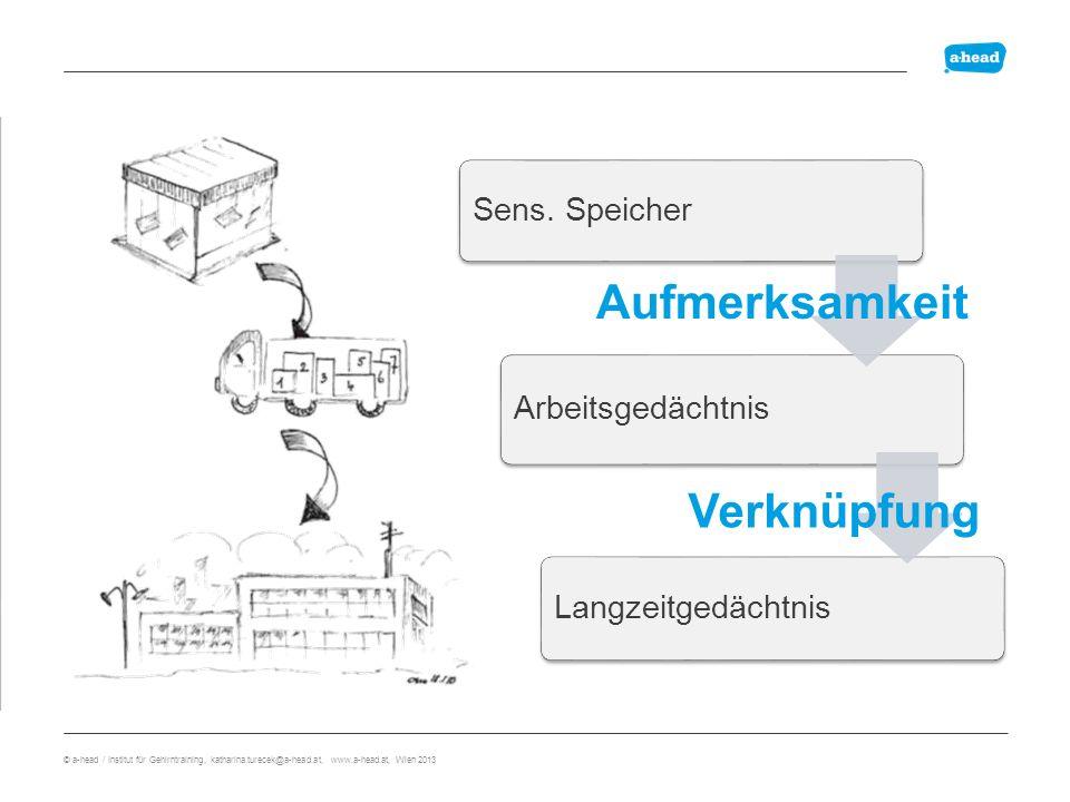 Pyramide 6 29 845 9072 80385 220539 2084934 95736748 210675593 4083763032 © a-head / Institut für Gehirntraining, katharina.turecek@a-head.at, www.a-head.at, Wien 2013