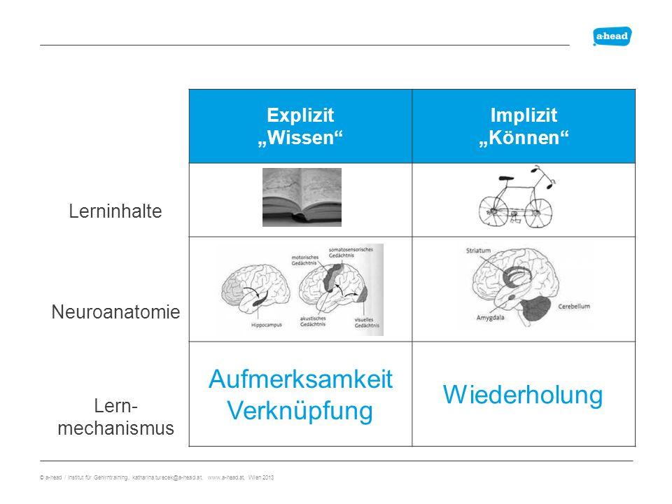 Cortex cerebri Präfrontaler Cortex: Übergang sensorischer Speicher => Arbeitsgedächtnis Hippocampus: Übergang Arbeitsgedächtnis => Langzeitgedächtnis Anatomie explizites Gedächtnis Wo werden Gedächtnisinhalte gespeichert.