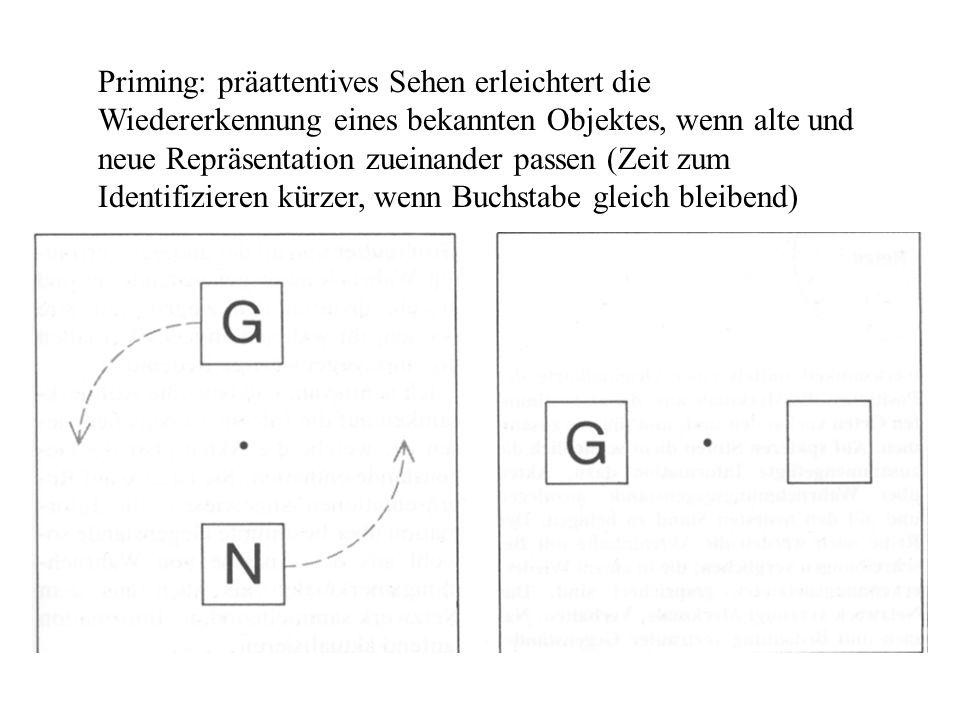 Priming: präattentives Sehen erleichtert die Wiedererkennung eines bekannten Objektes, wenn alte und neue Repräsentation zueinander passen (Zeit zum I