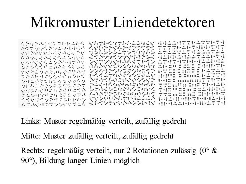 Mikromuster Liniendetektoren Links: Muster regelmäßig verteilt, zufällig gedreht Mitte: Muster zufällig verteilt, zufällig gedreht Rechts: regelmäßig