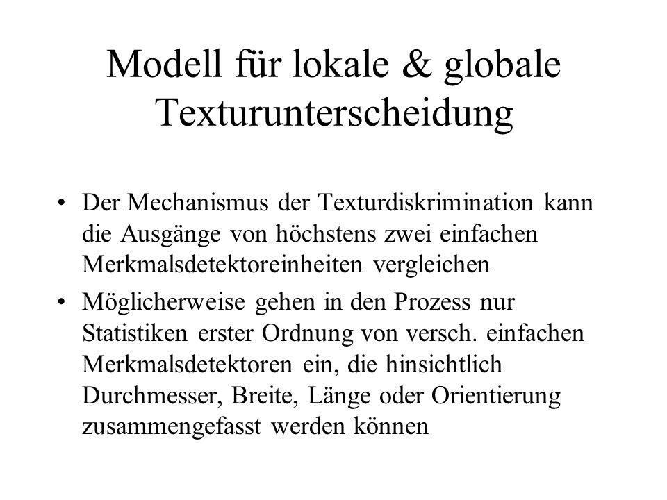 Modell für lokale & globale Texturunterscheidung Der Mechanismus der Texturdiskrimination kann die Ausgänge von höchstens zwei einfachen Merkmalsdetek