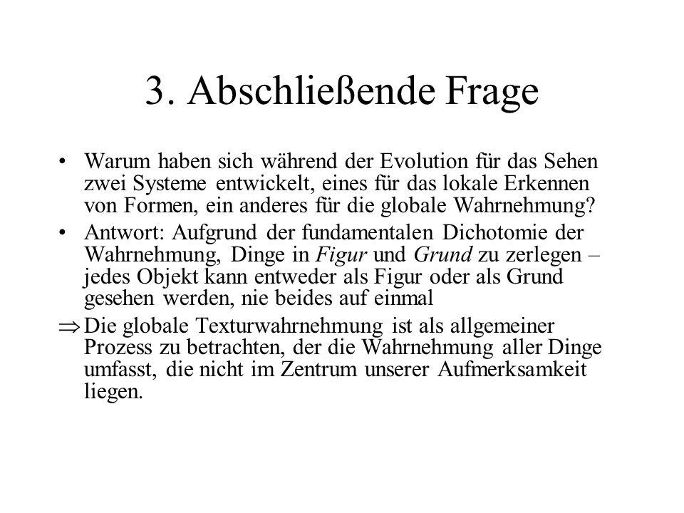3. Abschließende Frage Warum haben sich während der Evolution für das Sehen zwei Systeme entwickelt, eines für das lokale Erkennen von Formen, ein and