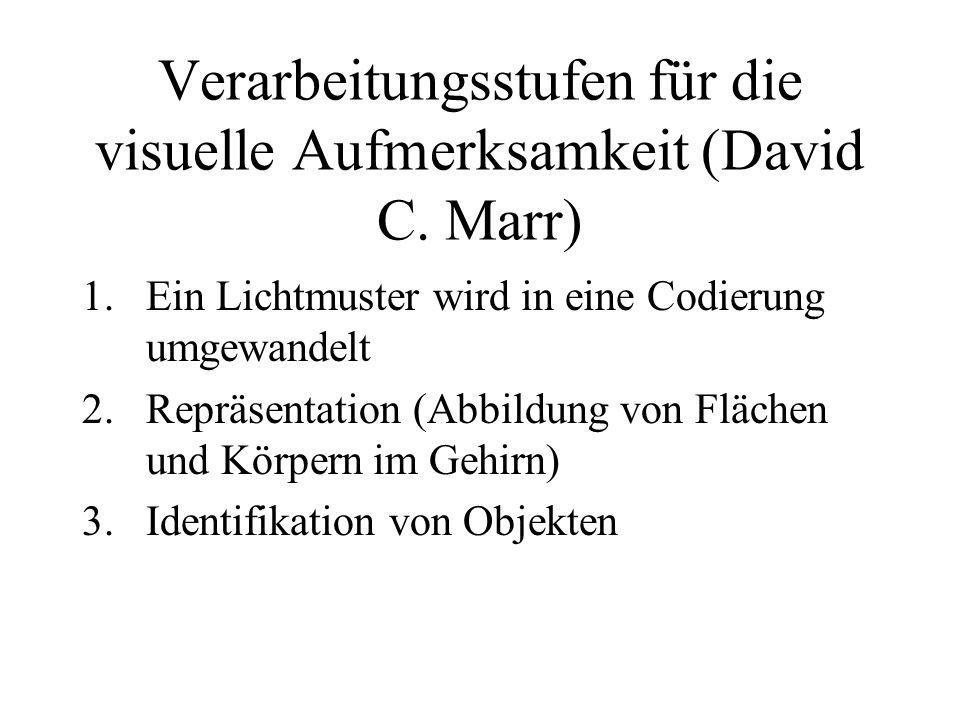 Verarbeitungsstufen für die visuelle Aufmerksamkeit (David C. Marr) 1.Ein Lichtmuster wird in eine Codierung umgewandelt 2.Repräsentation (Abbildung v