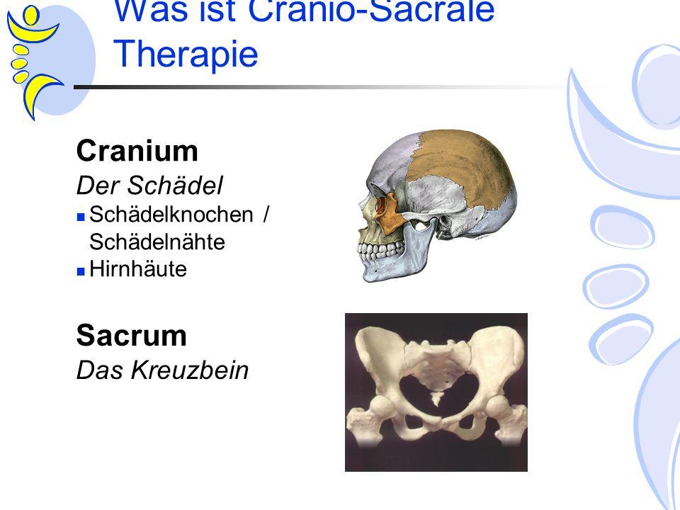 Was ist Cranio-Sacrale Therapie Cranium Der Schädel Schädelknochen / Schädelnähte Hirnhäute Sacrum Das Kreuzbein