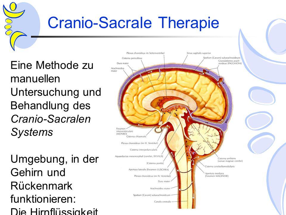 Cranio-Sacrale Therapie Eine Methode zu manuellen Untersuchung und Behandlung des Cranio-Sacralen Systems Umgebung, in der Gehirn und Rückenmark funkt