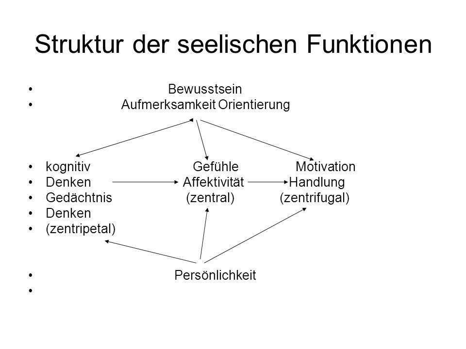 Struktur der seelischen Funktionen Bewusstsein Aufmerksamkeit Orientierung kognitiv Gefühle Motivation Denken Affektivität Handlung Gedächtnis (zentra