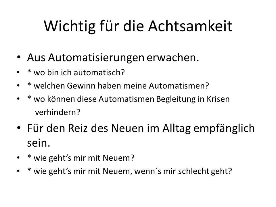 Wichtig für die Achtsamkeit Aus Automatisierungen erwachen. * wo bin ich automatisch? * welchen Gewinn haben meine Automatismen? * wo können diese Aut