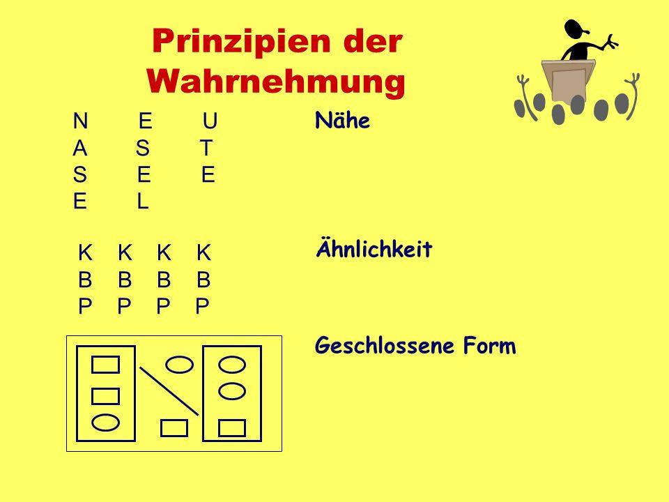 Prinzipien der Wahrnehmung Nähe Ähnlichkeit Geschlossene Form N E U A S T S E E E L K K B B P P