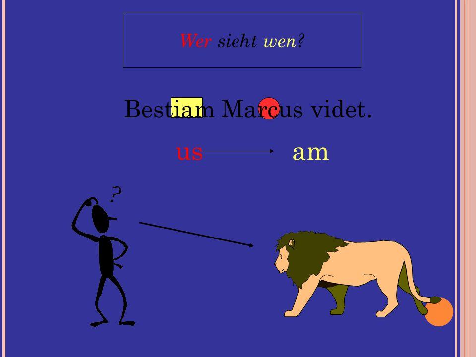 Bestiam Marcus videt. Wer sieht wen? us am