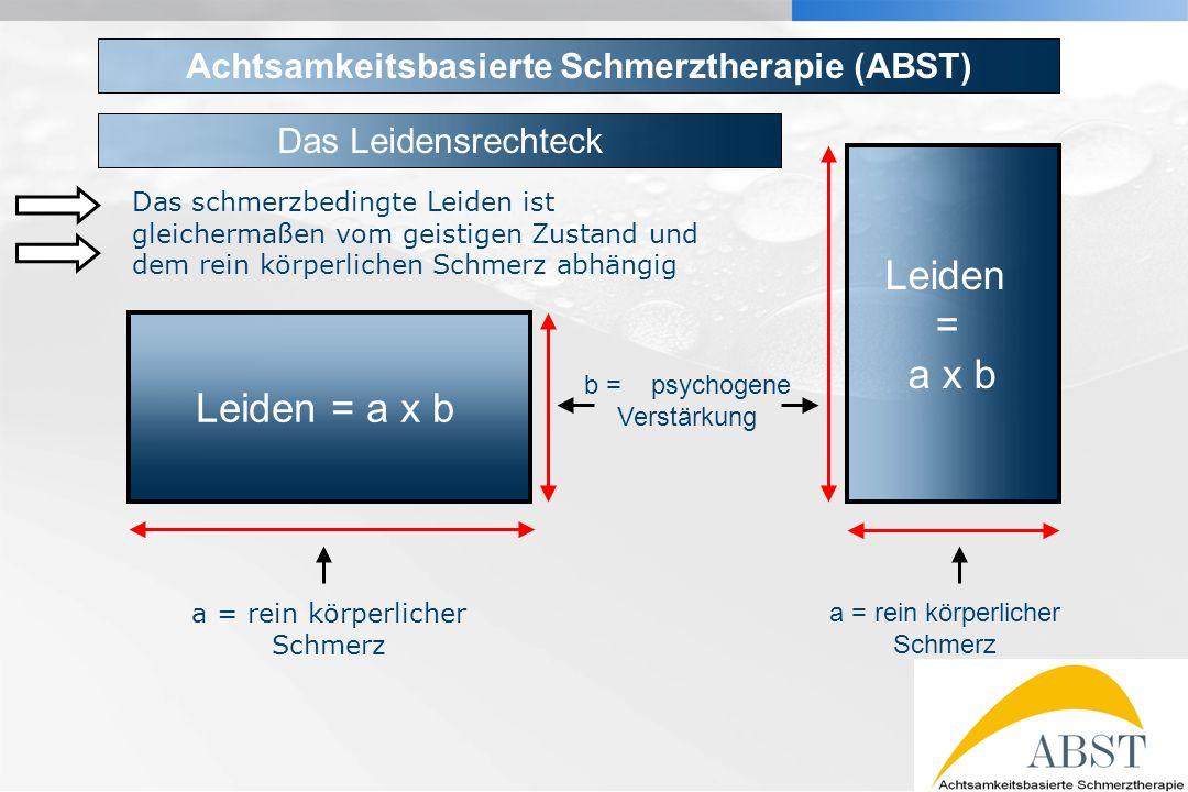 YOUR LOGO Leiden = a x b Leiden = a x b a = rein körperlicher Schmerz b = psychogene Verstärkung Achtsamkeitsbasierte Schmerztherapie (ABST) Das schme