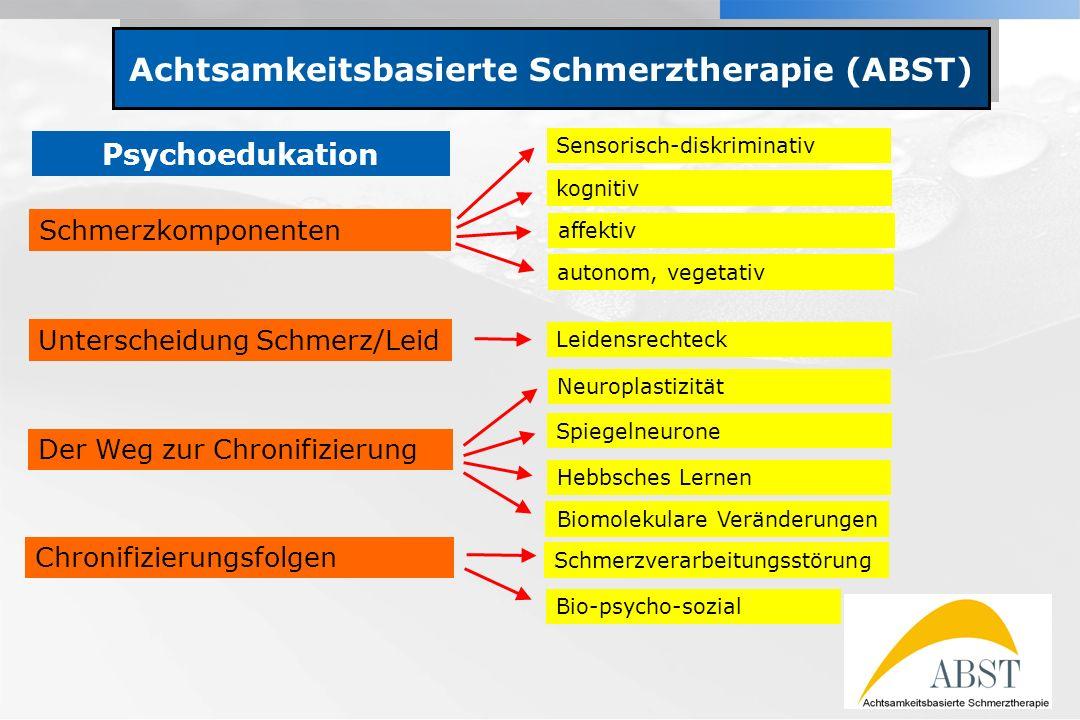 YOUR LOGO Achtsamkeitsbasierte Schmerztherapie (ABST) Schmerzkomponenten Sensorisch-diskriminativ kognitiv affektiv autonom, vegetativ Unterscheidung