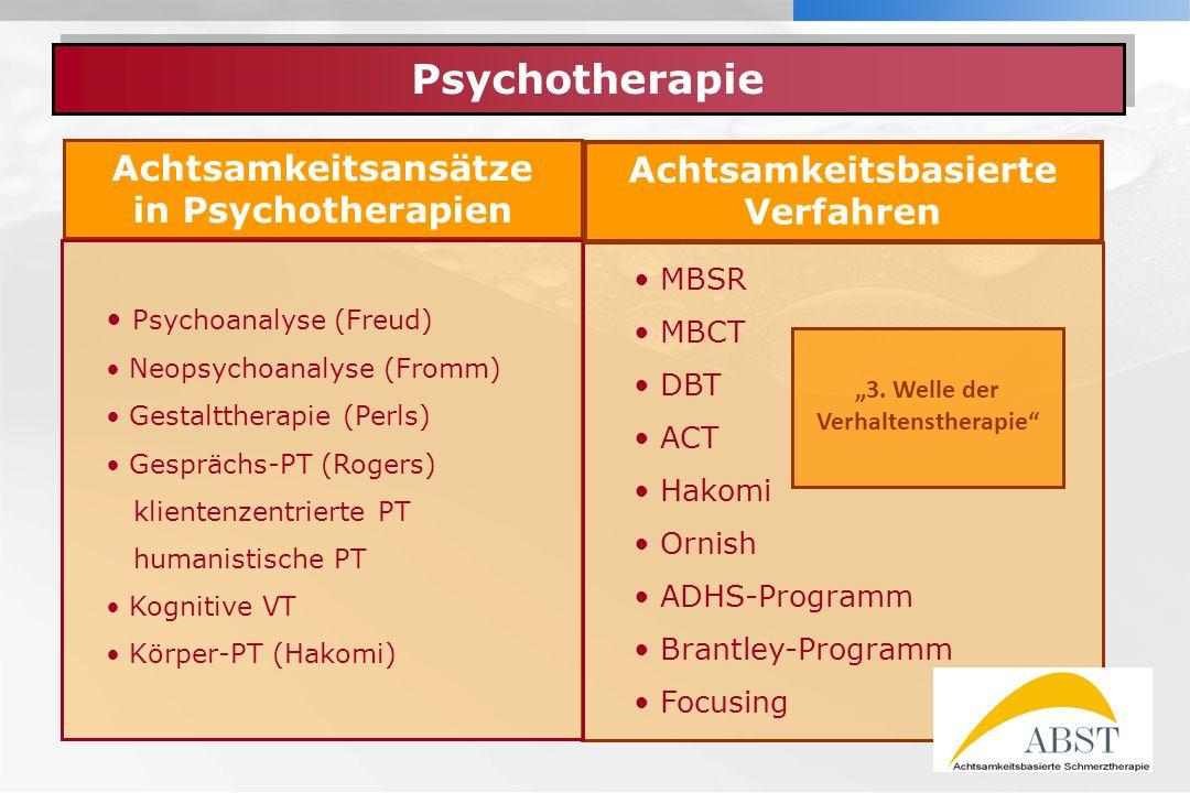 YOUR LOGO Achtsamkeitsansätze in Psychotherapien Psychotherapie MBSR MBCT DBT ACT Hakomi Ornish ADHS-Programm Brantley-Programm Focusing Achtsamkeitsb