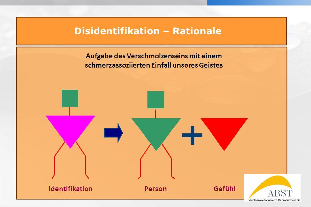 YOUR LOGO Disidentifikation – Rationale Aufgabe des Verschmolzenseins mit einem schmerzassoziierten Einfall unseres Geistes IdentifikationPersonGefühl