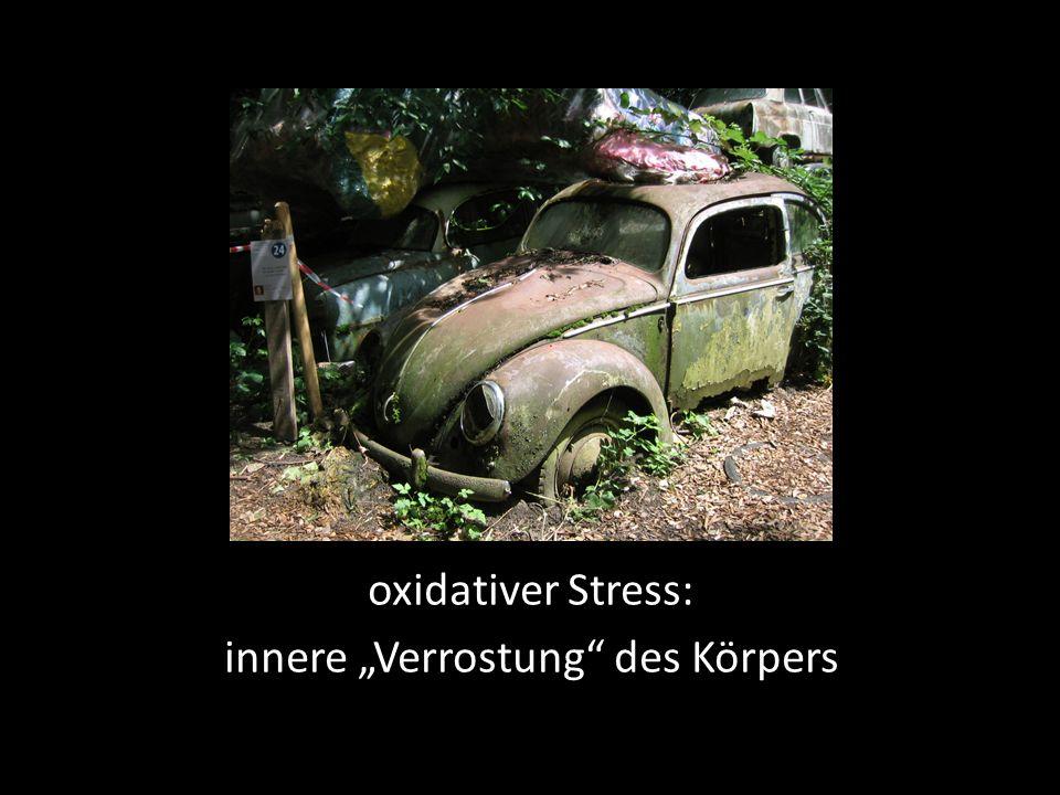 oxidativer Stress: innere Verrostung des Körpers
