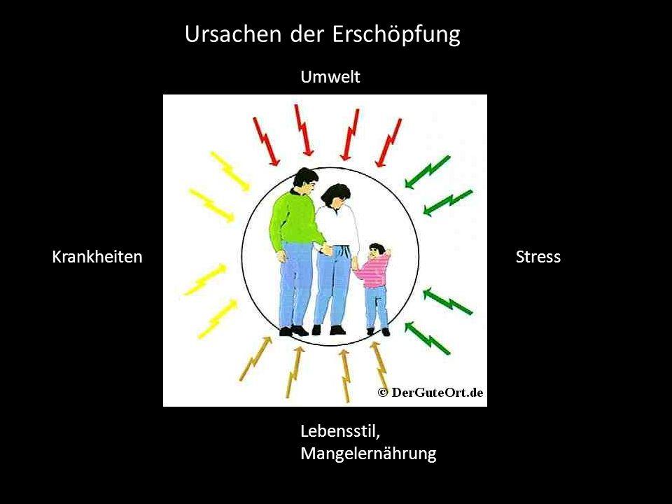Umwelt Krankheiten Stress Lebensstil, Mangelernährung Ursachen der Erschöpfung