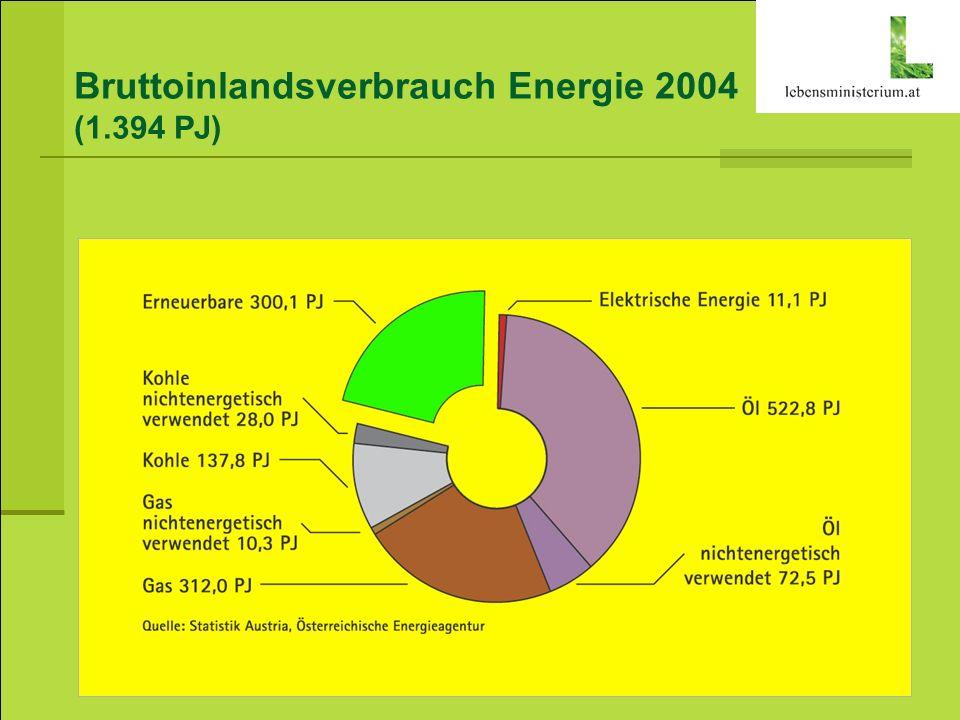 Bruttoinlandsverbrauch Energie 2004 (1.394 PJ)